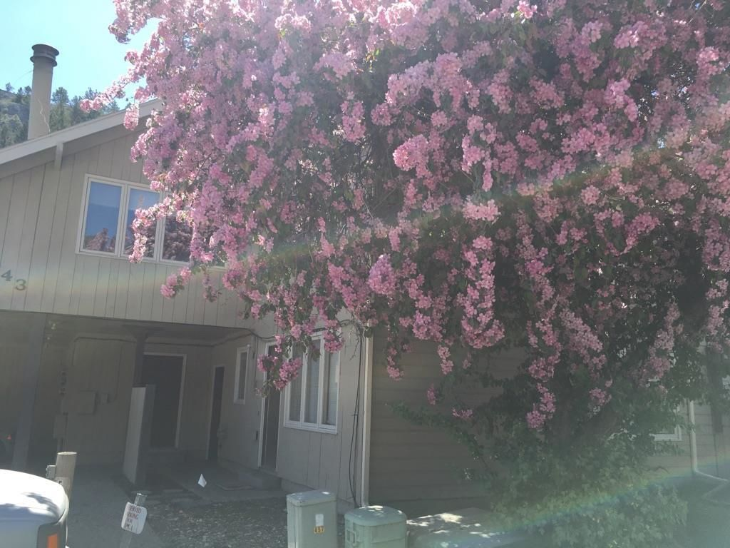 443 S PARK AVE # 1 Helena MT 59601 id-371976 homes for sale