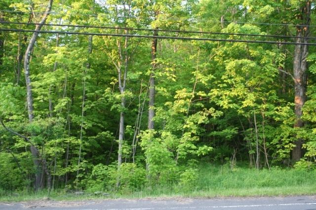 0 MAIN ST Becket MA 01223 id-1333 homes for sale
