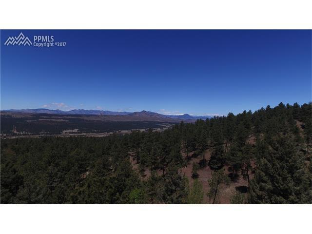 Ridgewood Homes For Sale Real Estate Woodland Park CO