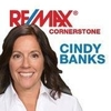Real Estate Agents: Cindy Banks Team, Carol-stream, IL
