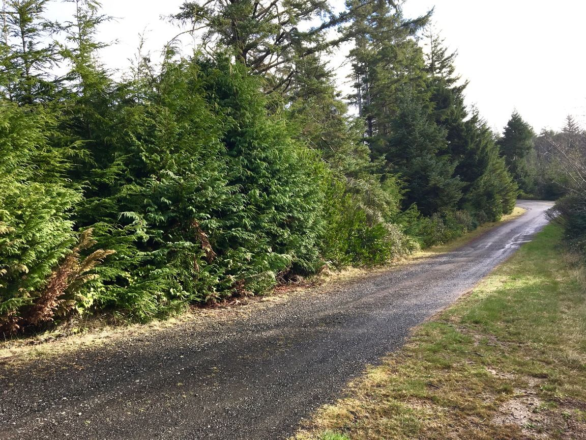 0 SACCHI LN Bandon OR 97411 id-713843 homes for sale