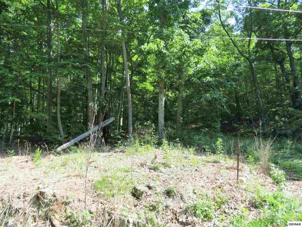 LOT 50 GREEN BAY DR Sevierville TN 37876 id-547495 homes for sale