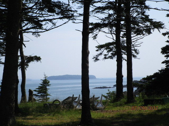 LOT 212 PETTEGROW POINT ROAD Machiasport ME 04655 id-307920 homes for sale