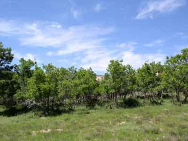 COUGAR CANYON BLK A LOT 18 Duck Creek Village UT 84762 id-193959 homes for sale