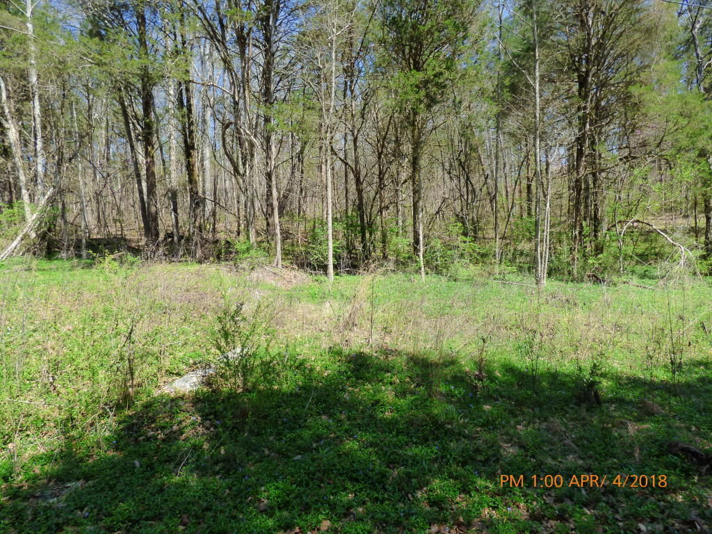 341 MARNEY COVE RD Kingston TN 37763 id-422226 homes for sale