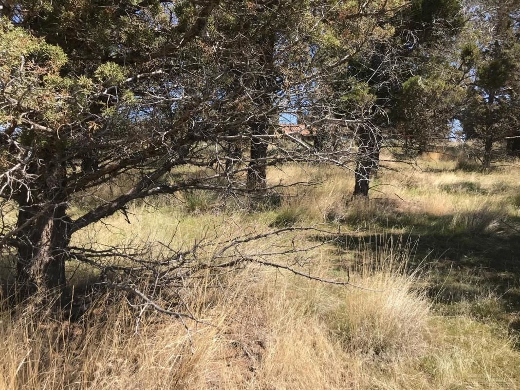 0LOT 3 NW GRIMES AVENUE Prineville OR 97754 id-1457206 homes for sale