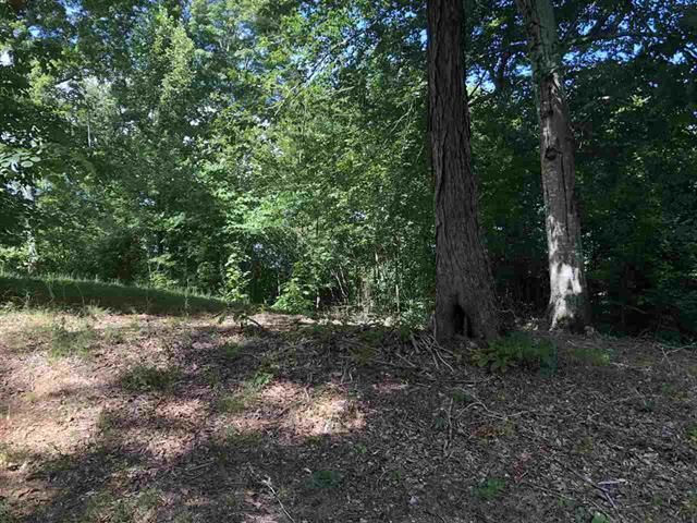 LOT 10 HILLTOP VIEW LN Bean Station TN 37708 id-1151038 homes for sale