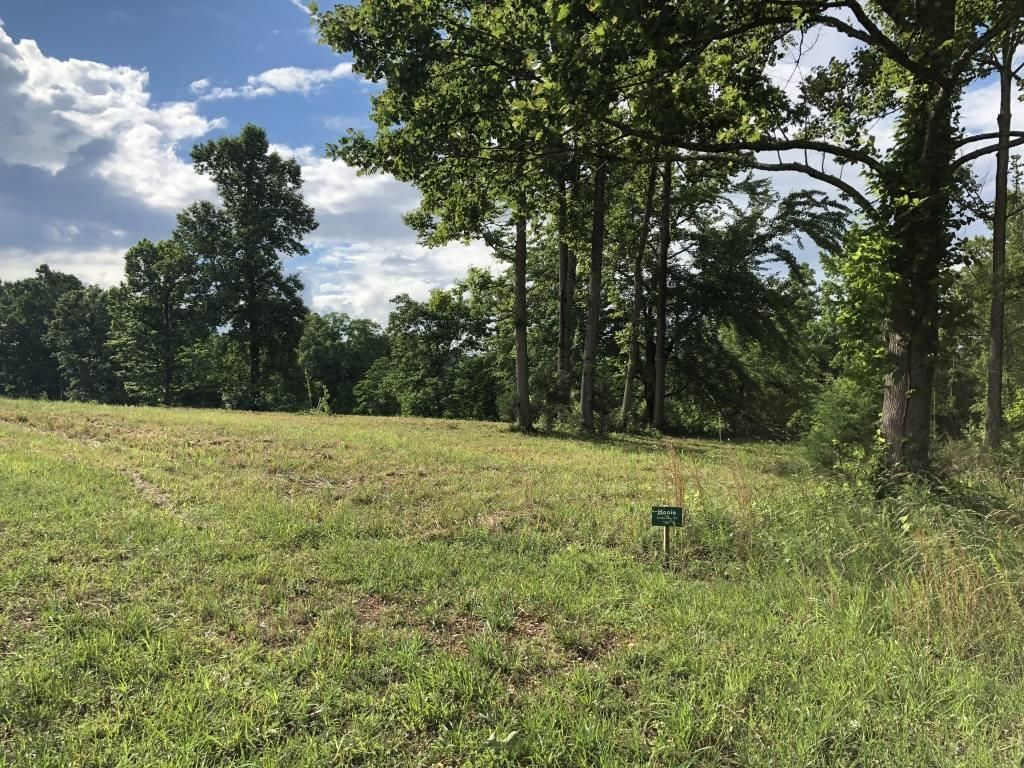 LOT 43 WINDSONG WAY Kingston TN 37763 id-922655 homes for sale