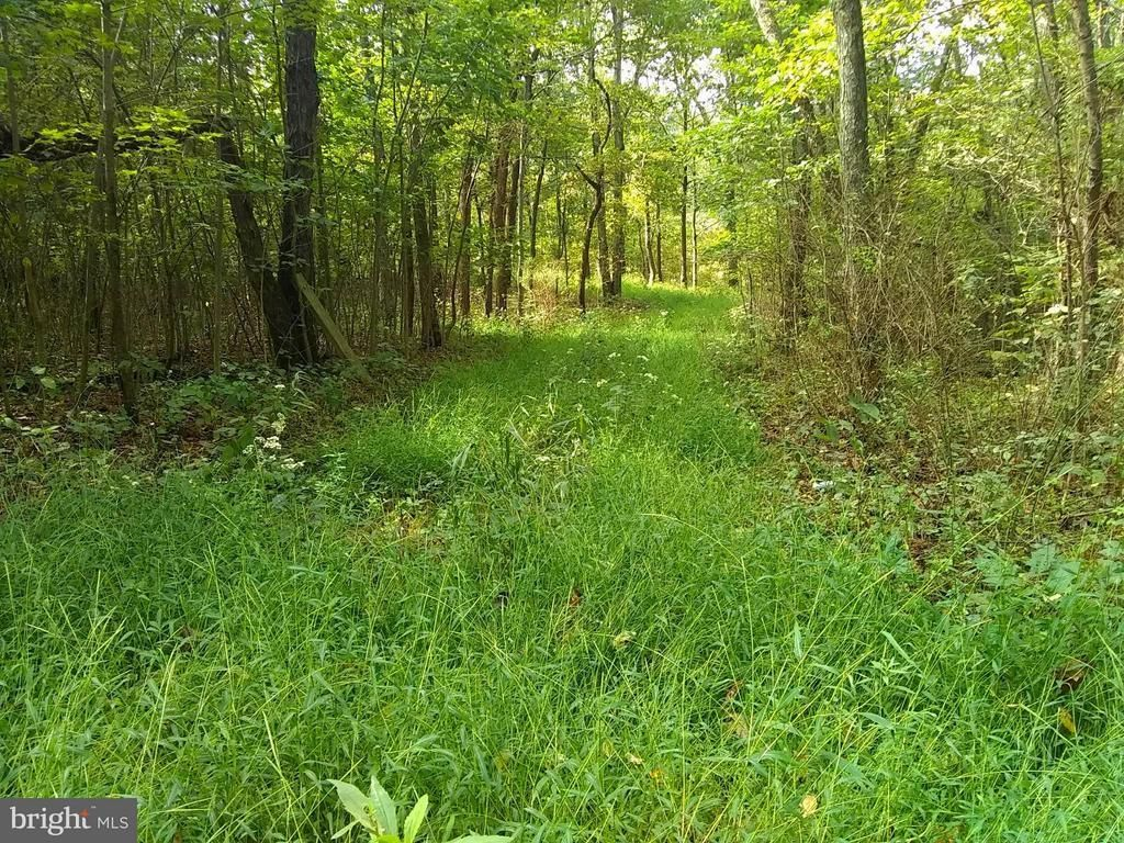 1 BLUE SPRUCE / CREST HAVEN RD Romney WV 26757 id-1236813 homes for sale