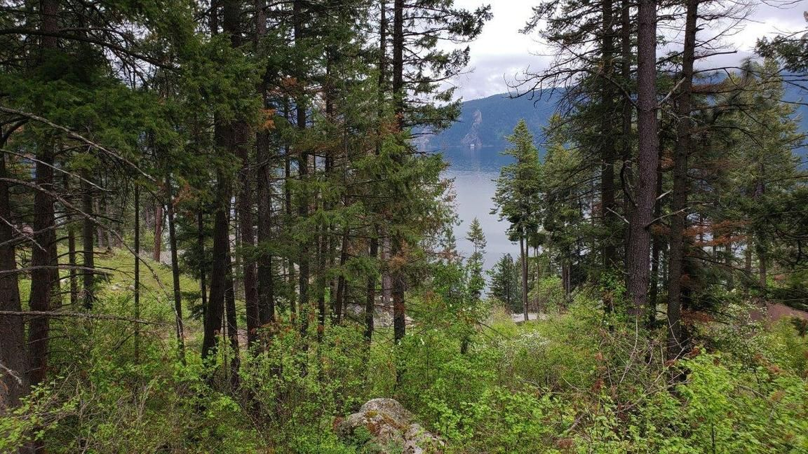 695 GLACIER LOOP RD Bayview ID 83803 id-567149 homes for sale