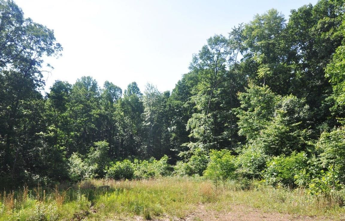 FALCONWOOD DRIVE LOT 9 Bloomery WV 26817 id-562242 homes for sale
