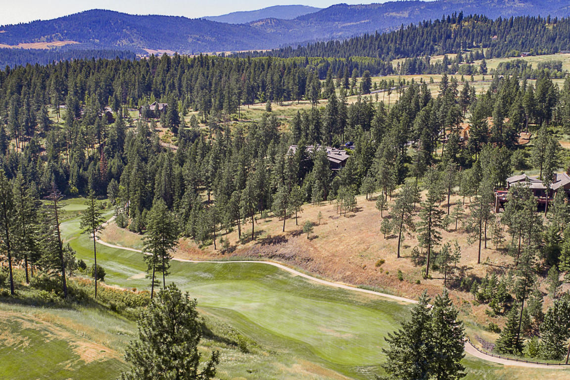 L256 S GYPSUM CT Coeur D'alene ID 83814 id-1307276 homes for sale
