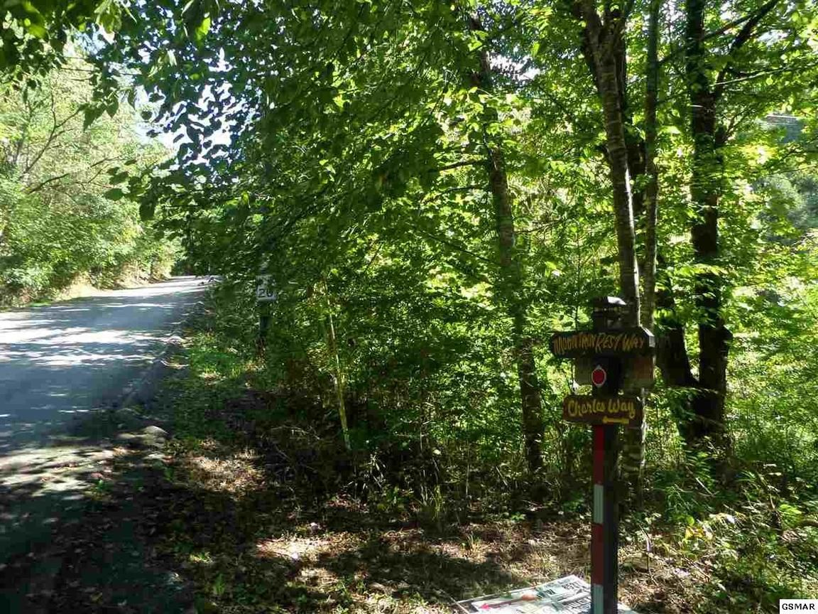 LOT 29 MOUNTAIN REST WAY Sevierville TN 37876 id-1352795 homes for sale