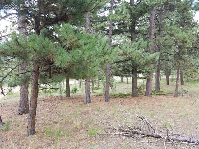 Home For Sale 0 Corral Lane Woodland Park CO 80863