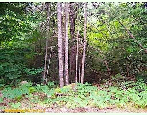 00 EAST OLD COUNTY RD Newcastle ME 04553 id-557003 homes for sale