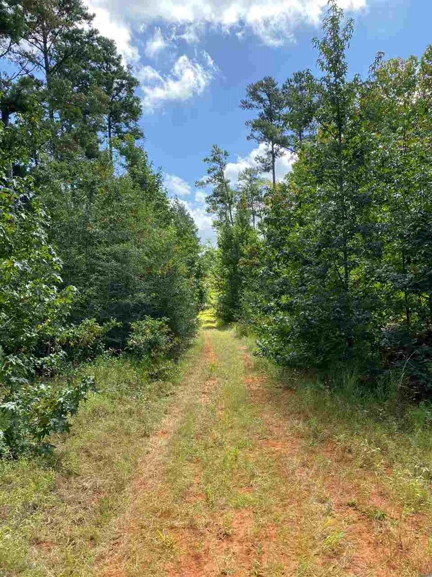 Lot In San Augustine