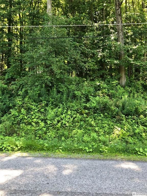 Lot In Bemus Point