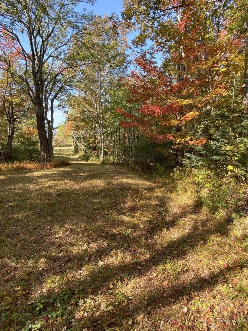Lot In Orland