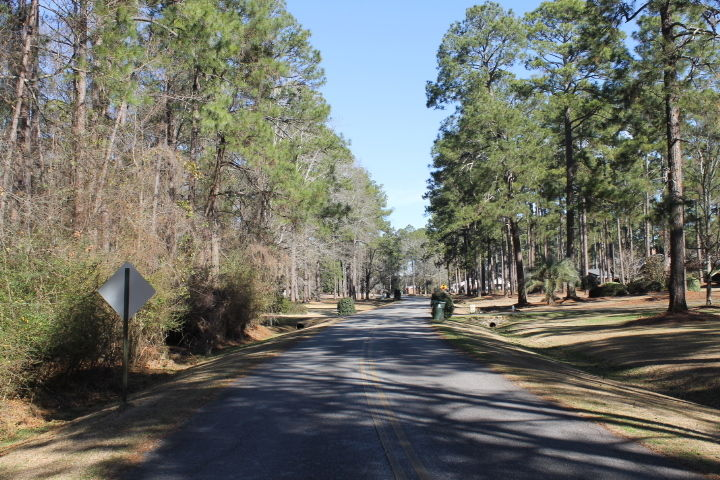 Lot In Dixie Hills