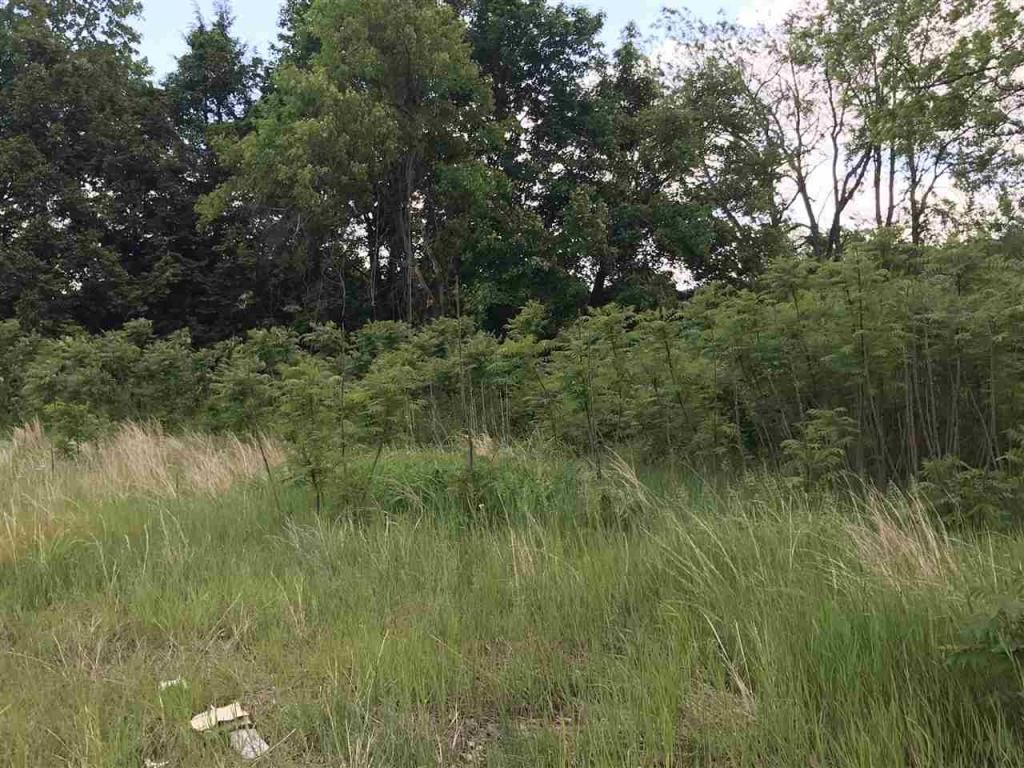 Lot In Hinsdale