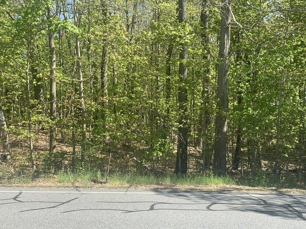 Lot In Amherst