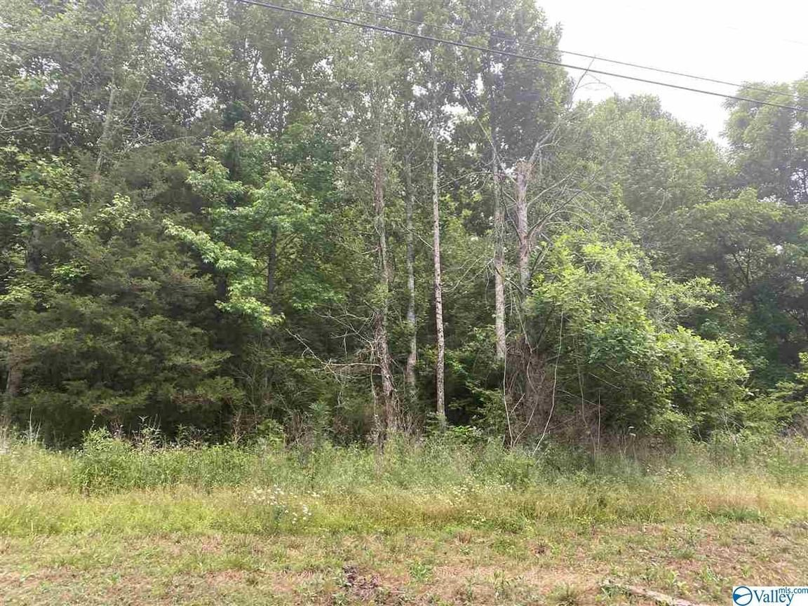 Lot In Gurley