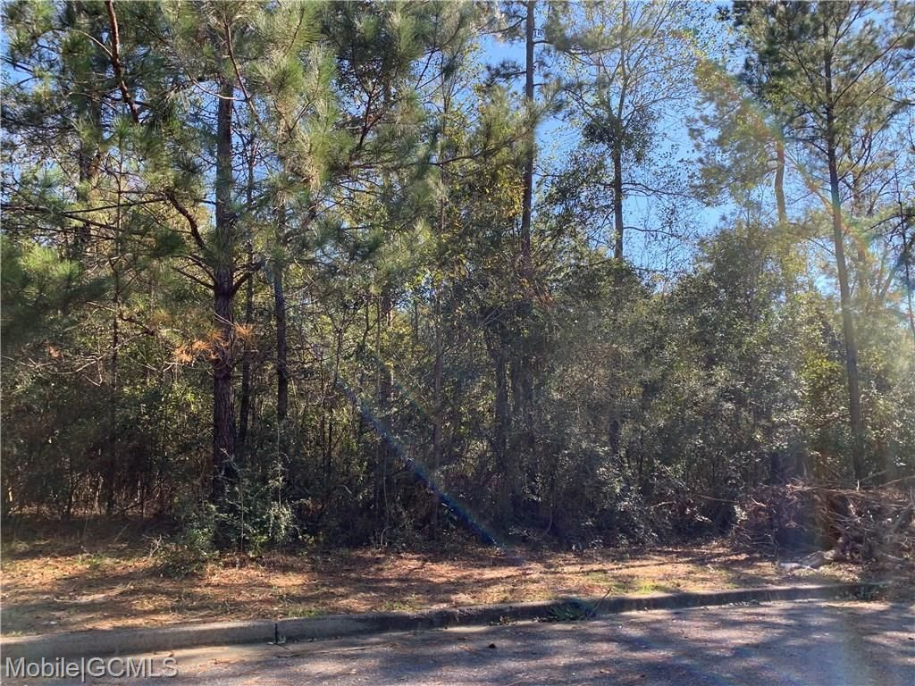 Lot In Saraland