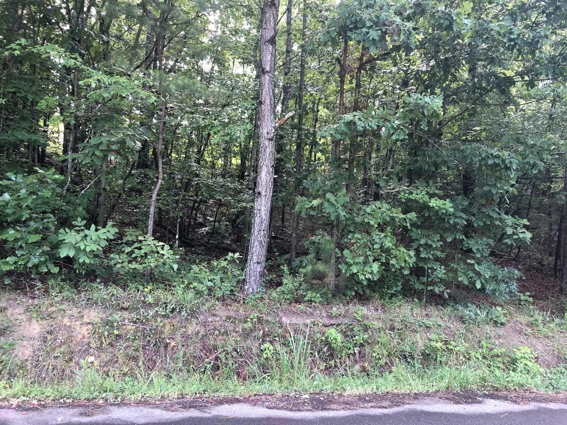 Lot In Ringgold