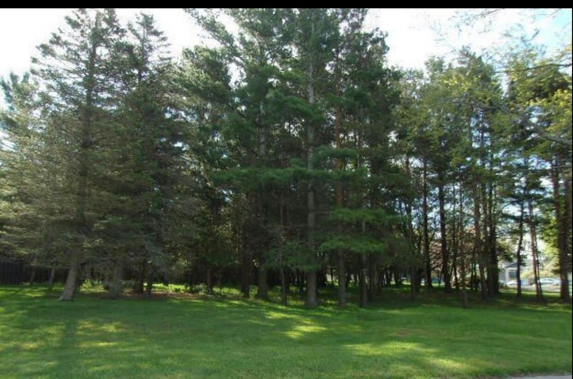 Lot In Manistee