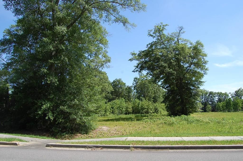 Lot In Picayune