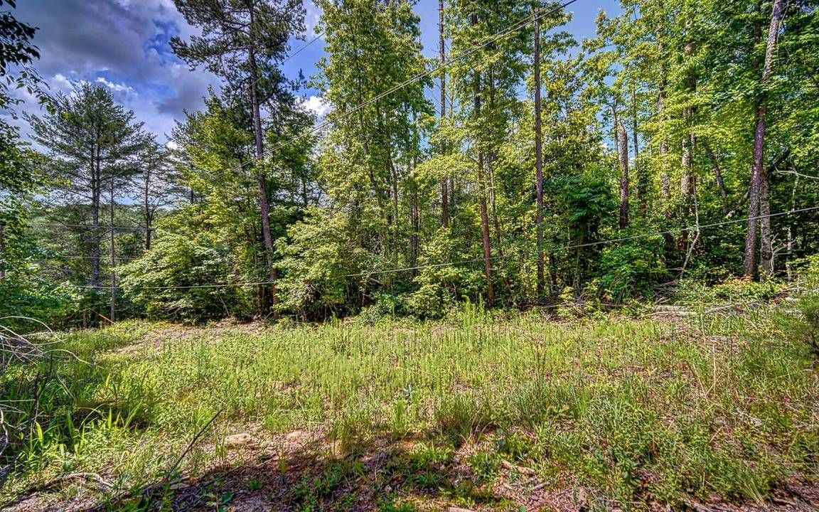 Lot In Lakemont