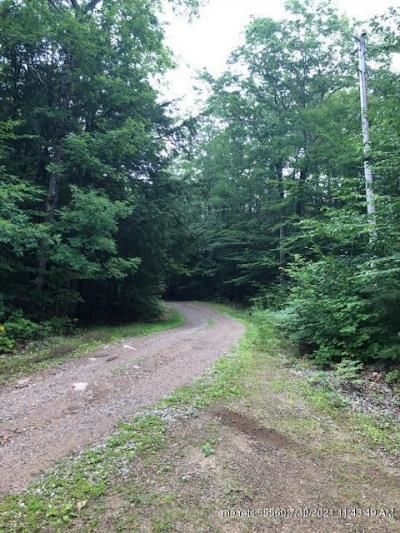 Lot In Alfred