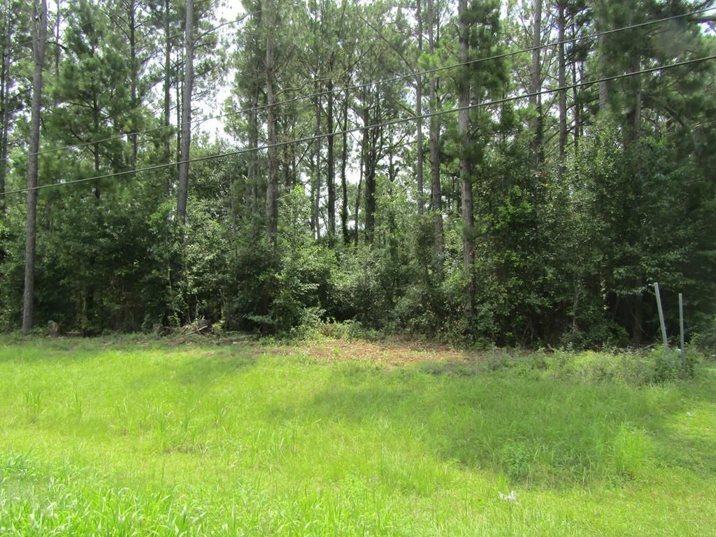 Lot In Whispering Pines