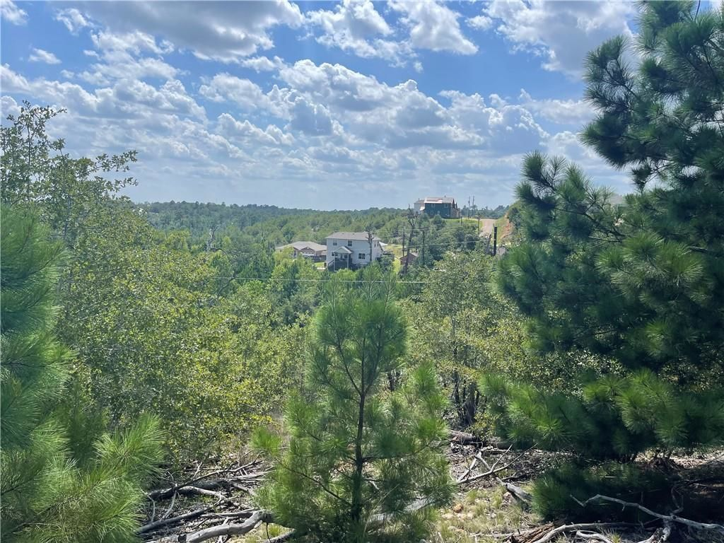 Lot In Pine Forest