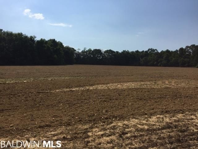 Lot In Daphne