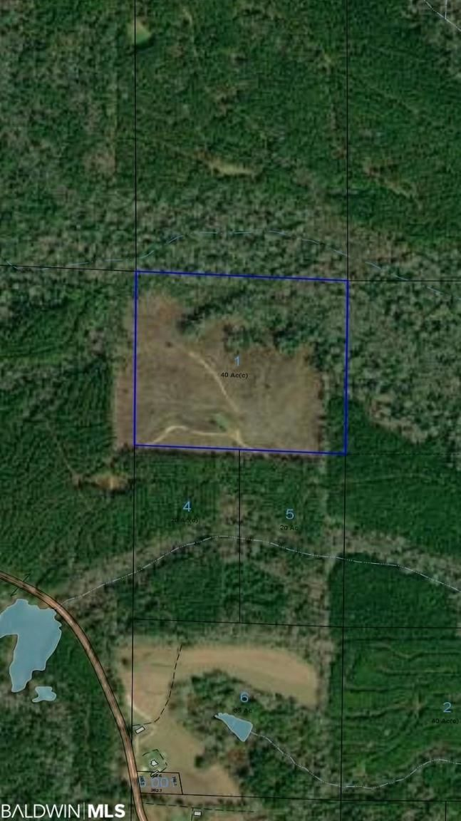 Lot In Evergreen