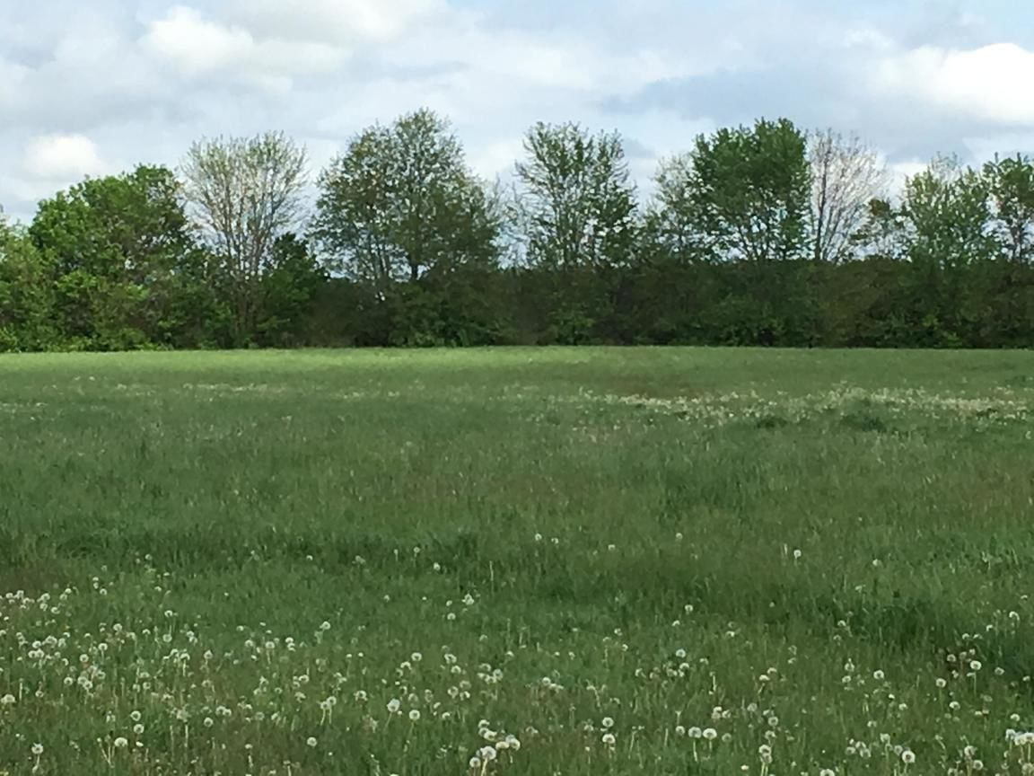 Lot In Circleville