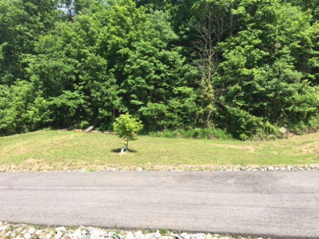 Lot In Pikeville