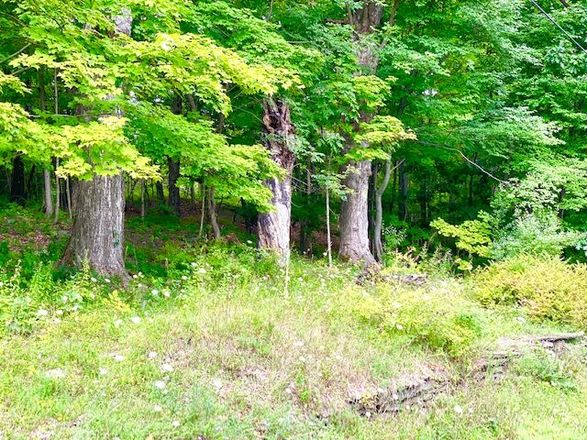 Lot In Wantage Township