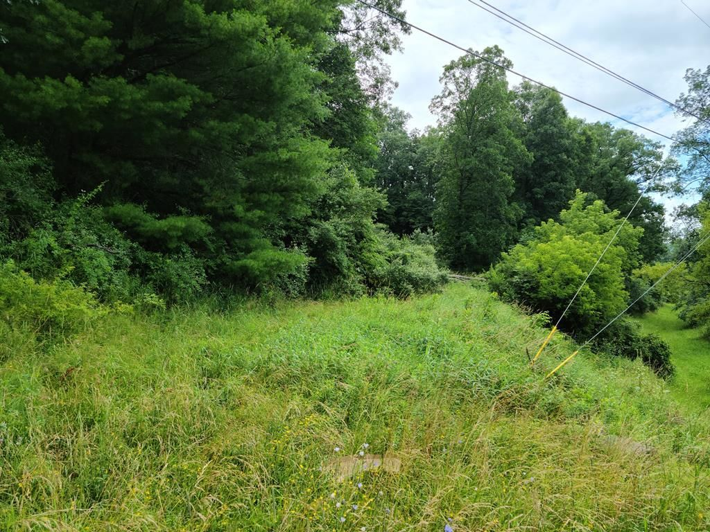 Lot In Knoxville