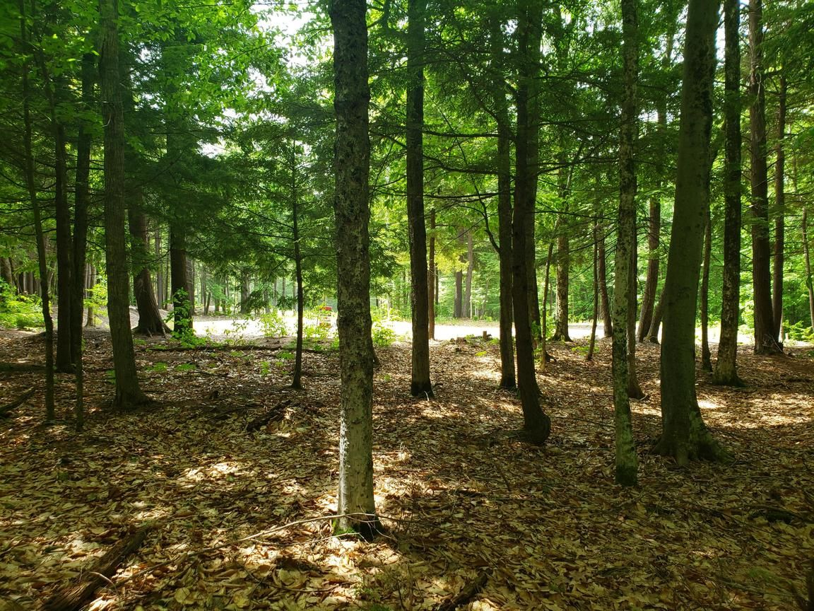 Lot In Hallowell