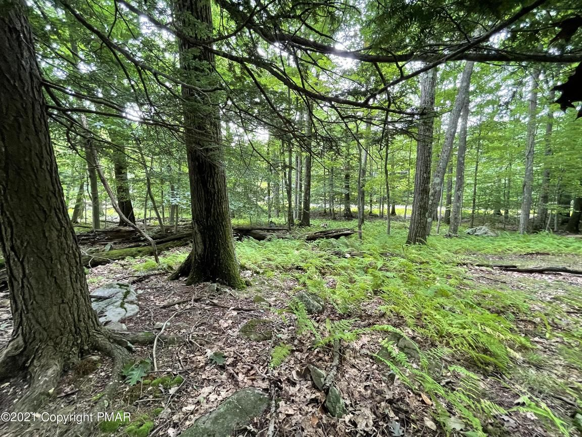 Lot In Canadensis