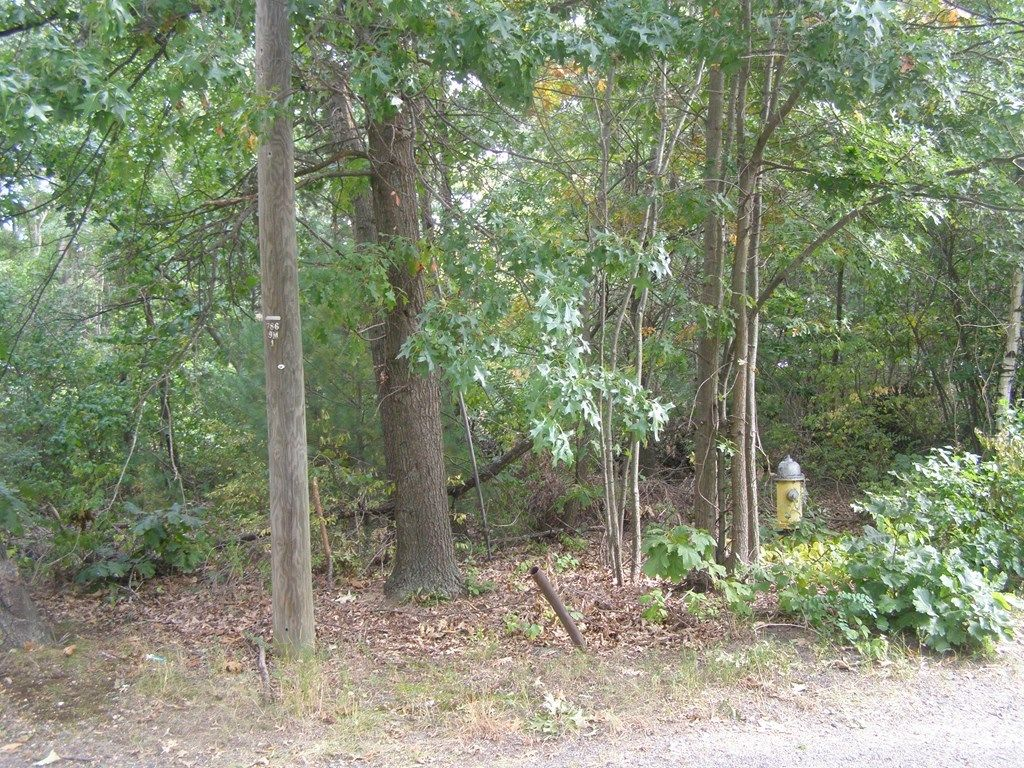 Lot In Pine Point