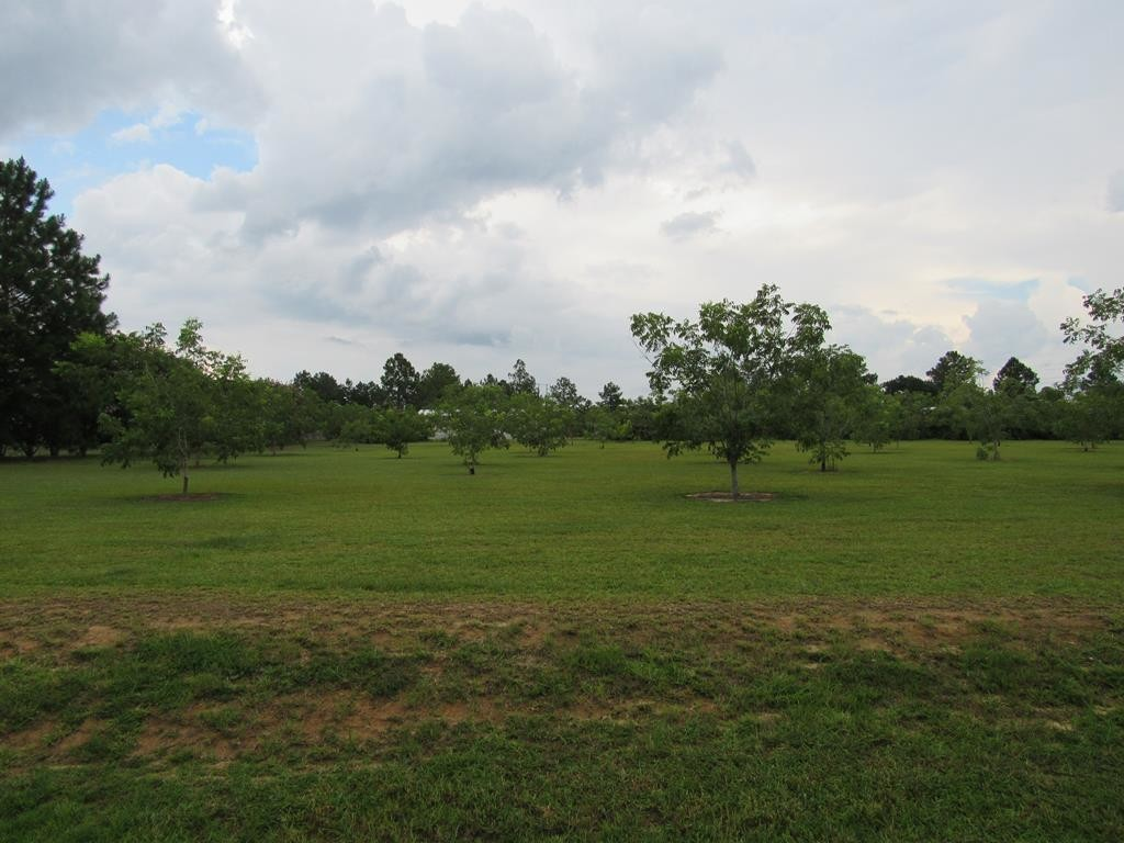 Lot In Norman Park