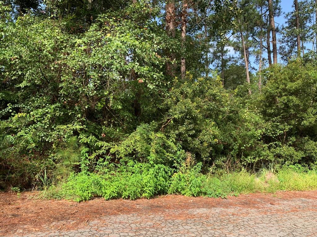 Lot In Forest Lakes