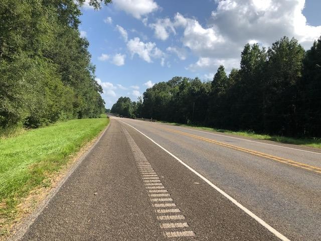 Lot In Pineland