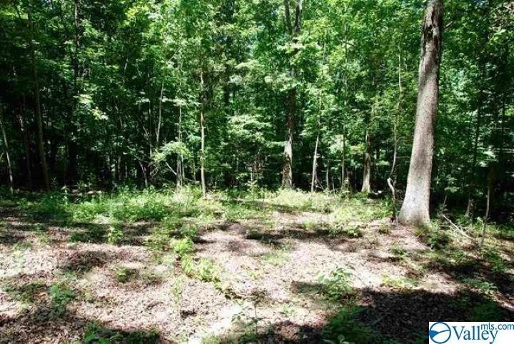Lot In Green Valley Acres