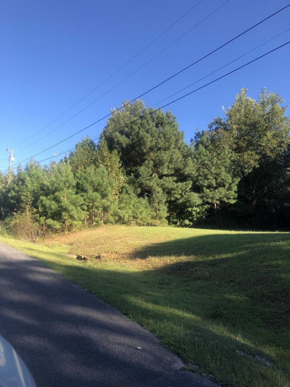 Lot In Stoney Brook