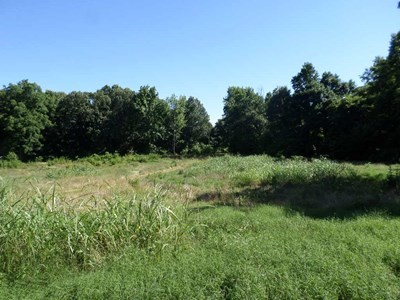 Lot In Atkins
