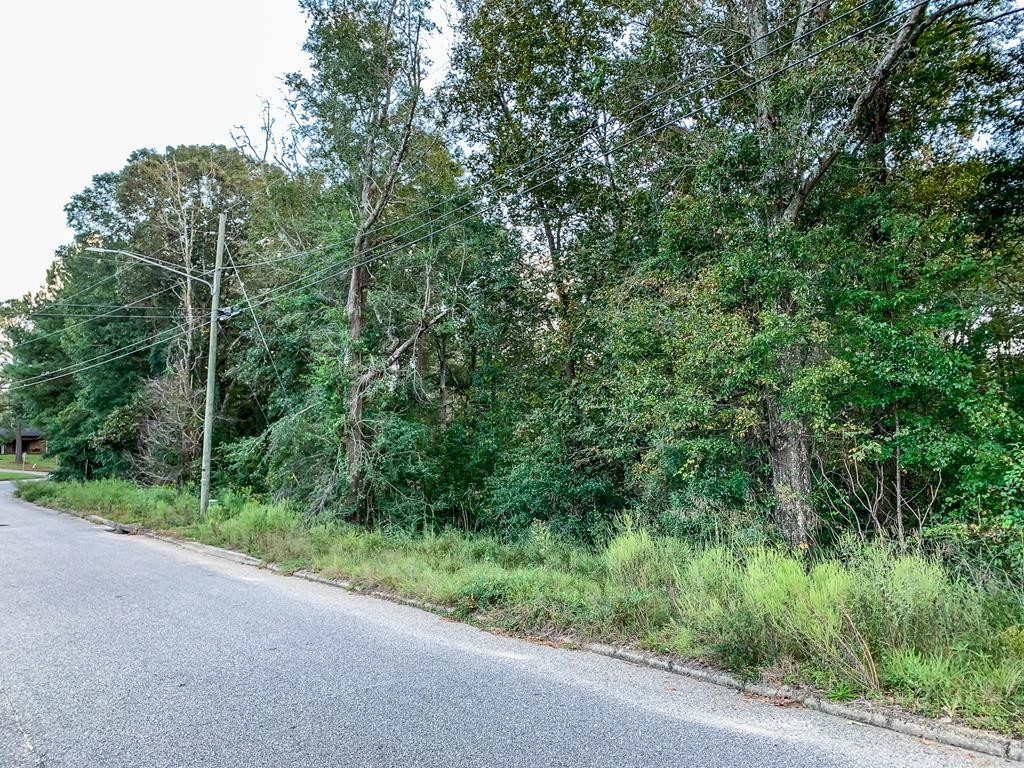 Lot In Windham Heights